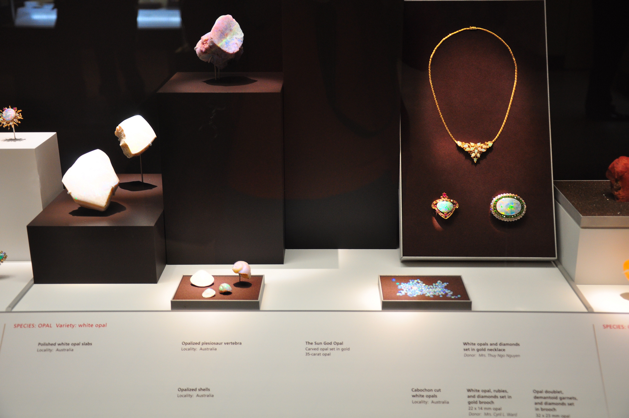 Photo of the Grainger Hall of Gems after its 2009 remodel. Dark display boxes against a white background highlight the evolution from raw gemstones (just out of view in a box of sand), to loose faceted gems, to beautiful jewels. Photo ©2012 Kimberly Vardeman.